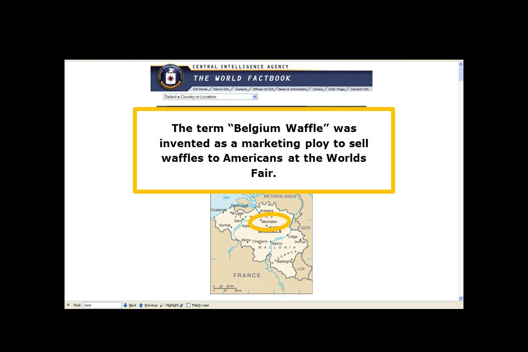 The term Belgium Waffle was invented as a marketing ploy to sell waffles to Americans at the Worlds Fair.