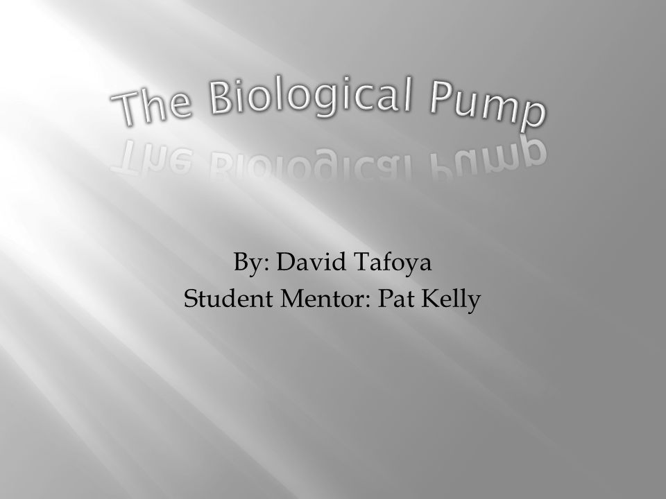 By: David Tafoya Student Mentor: Pat Kelly
