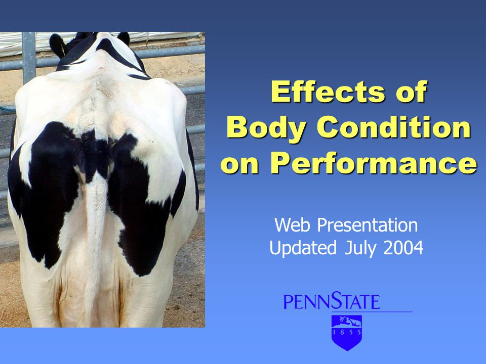Effects of Body Condition on Performance Web Presentation Updated July 2004