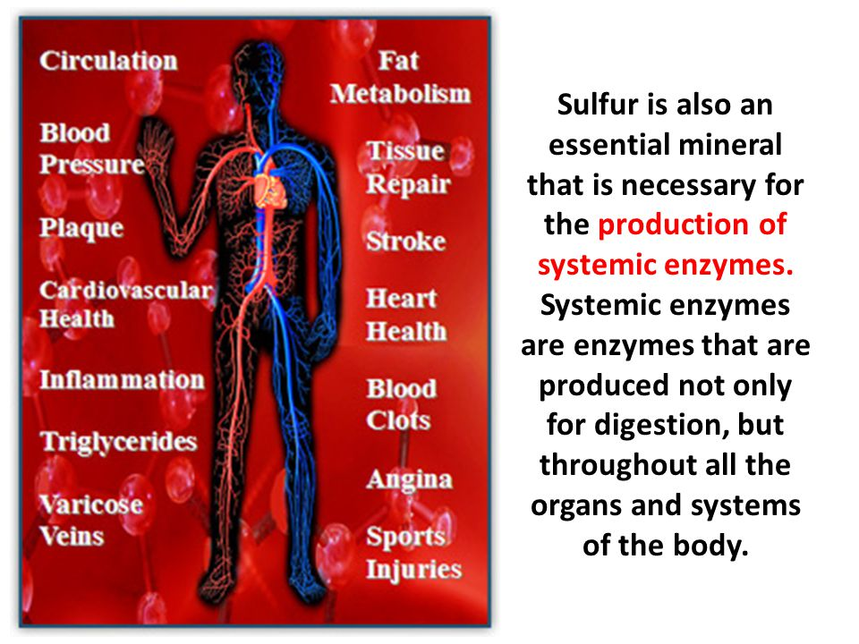 Sulfur is also an essential mineral that is necessary for the production of systemic enzymes.