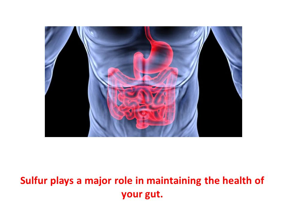 Sulfur plays a major role in maintaining the health of your gut.