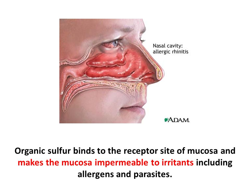 Organic sulfur binds to the receptor site of mucosa and makes the mucosa impermeable to irritants including allergens and parasites.