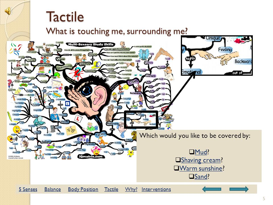 Tactile What is touching me, surrounding me.Which would you like to be covered by:  Mud.