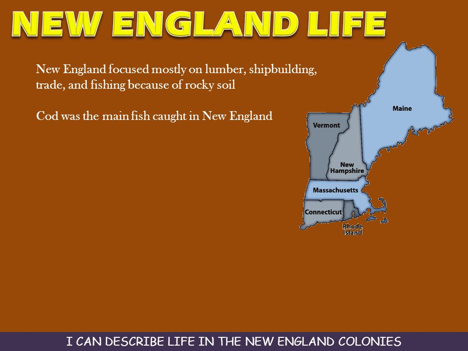 New England focused mostly on lumber, shipbuilding, trade, and fishing because of rocky soil Cod was the main fish caught in New England I CAN DESCRIB