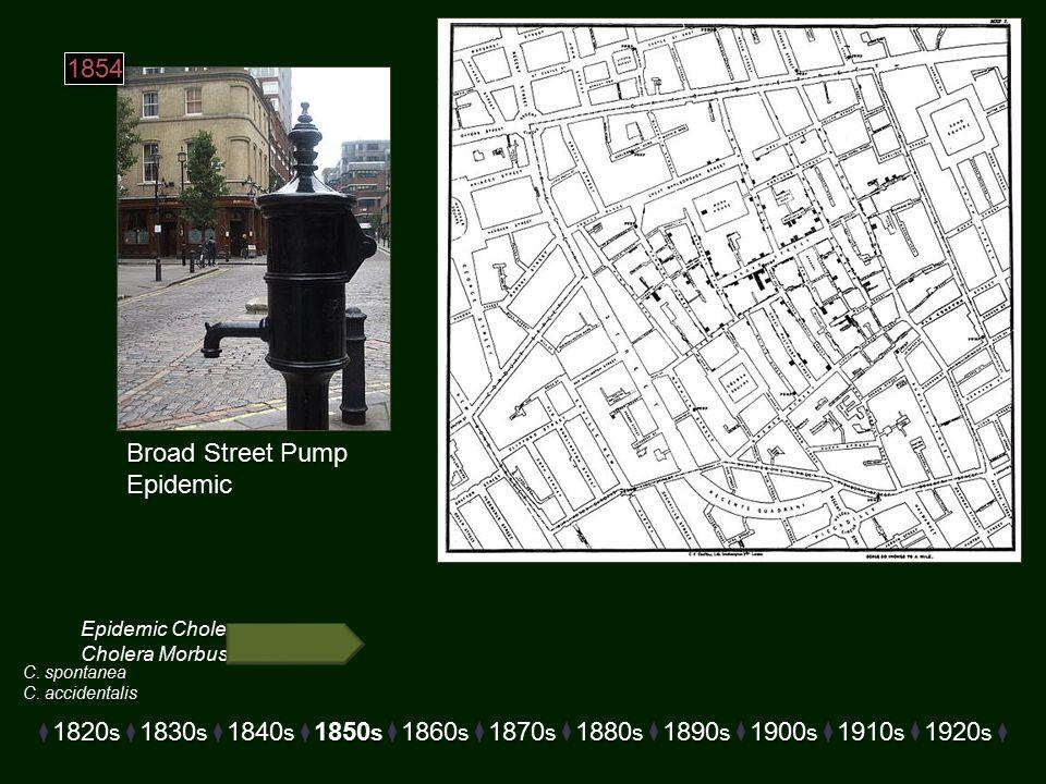 Epidemic Cholera Cholera Morbus Broad Street Pump Epidemic 1820 s 1830 s 1840 s 1850 s 1860 s 1870 s 1880 s 1890 s 1900 s 1910 s 1920 s 1854 C.