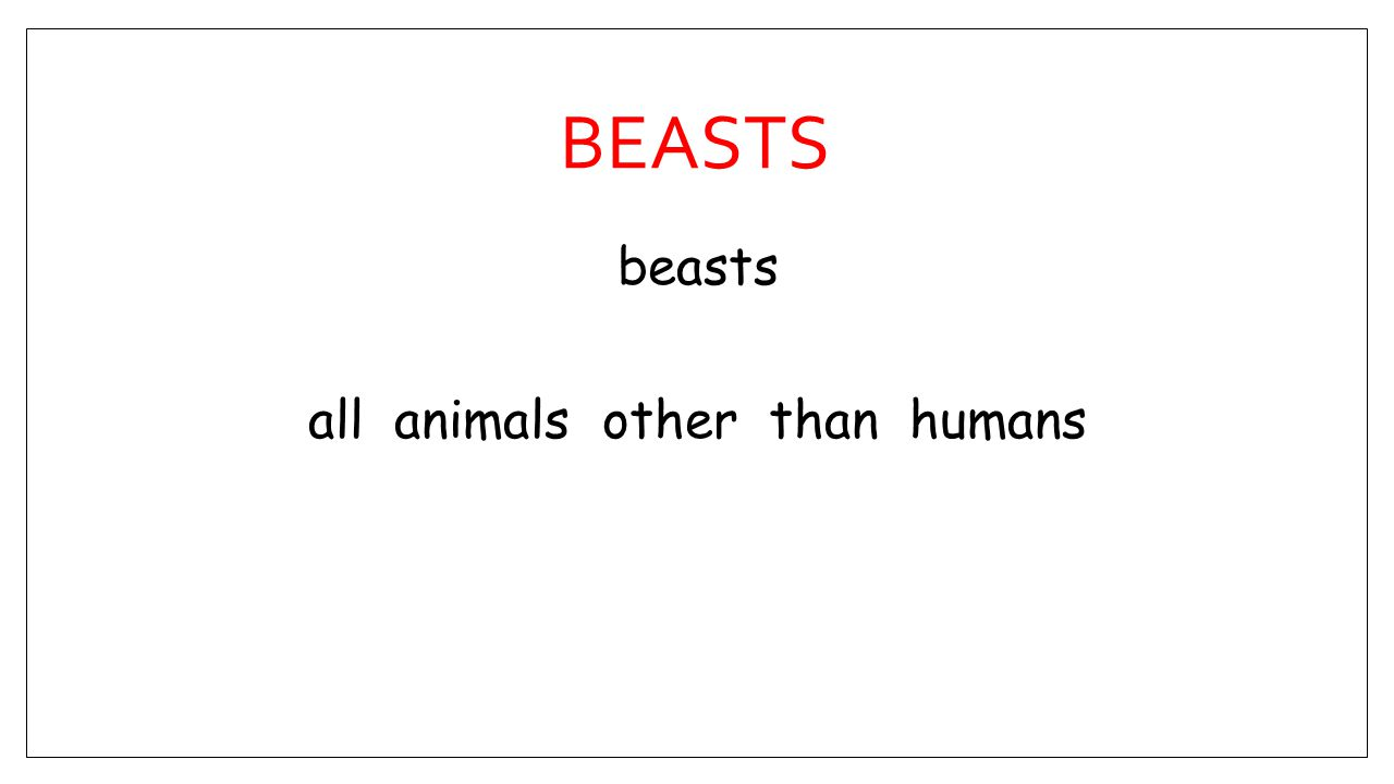 BEASTS beasts all animals other than humans