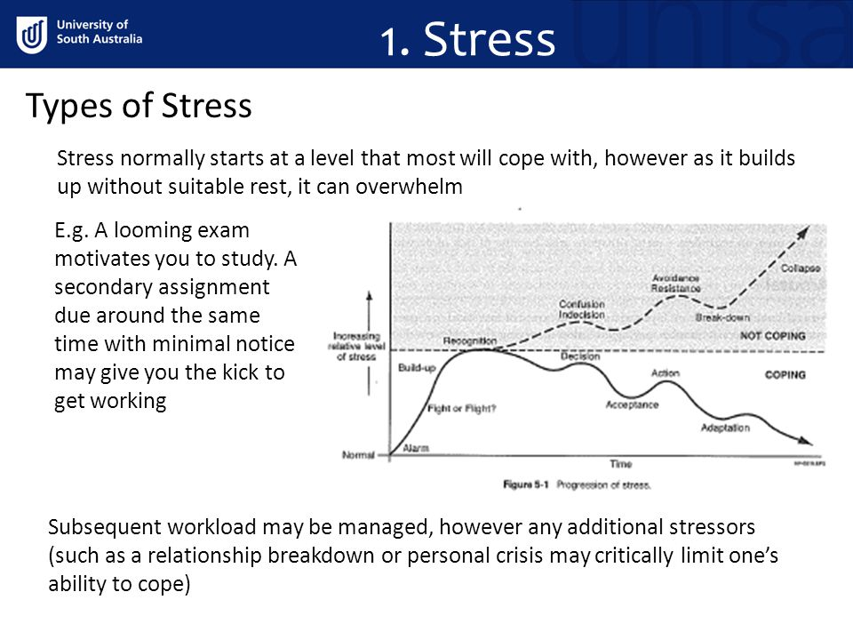 1. Stress Types of Stress Stress normally starts at a level that most will cope with, however as it builds up without suitable rest, it can overwhelm