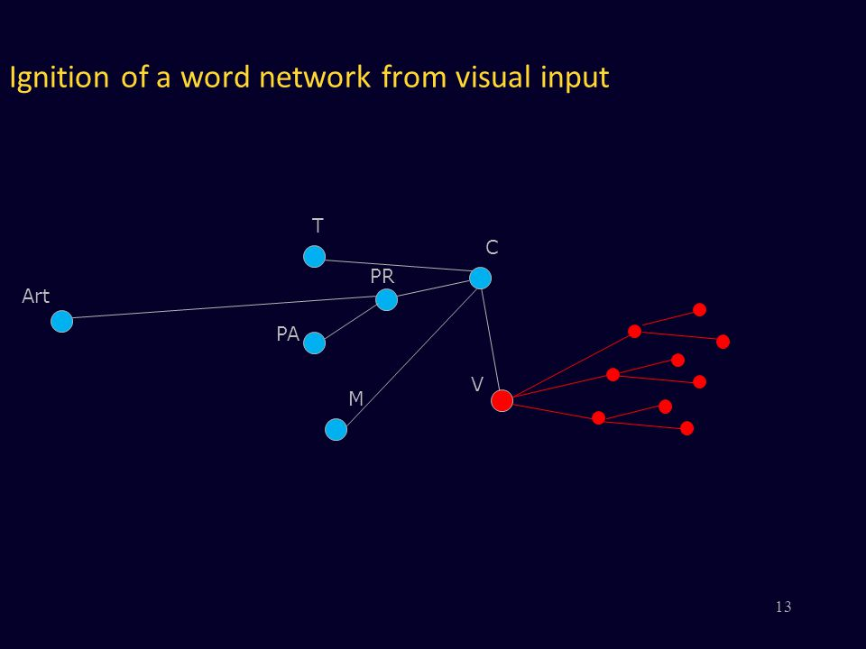 Ignition of a word network from visual input V PR PA M C Art T 13
