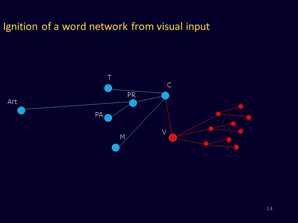 Ignition of a word network from visual input V PR PA M C Art T 14