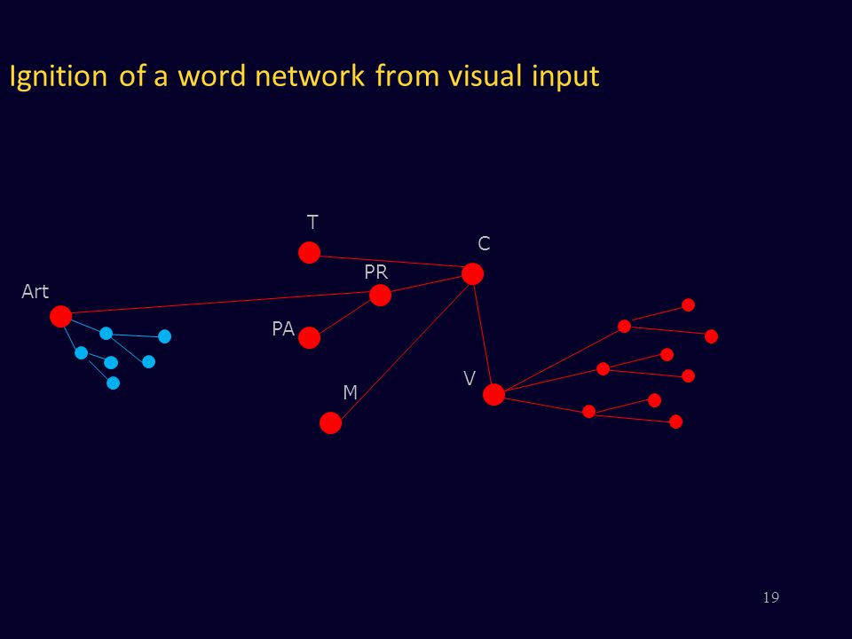Ignition of a word network from visual input V PR PA M C Art T 19