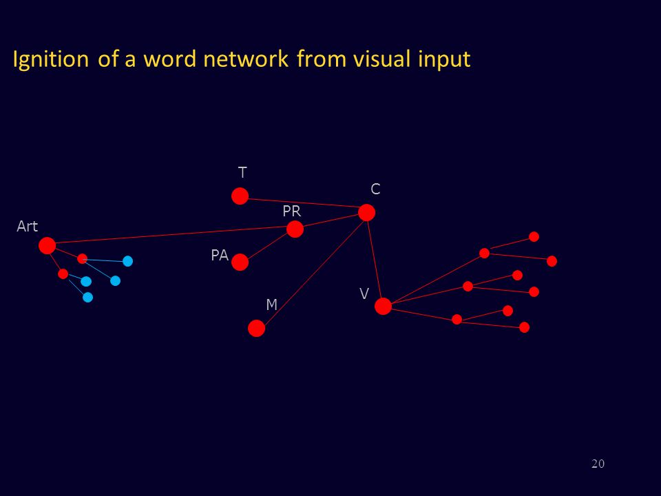 Ignition of a word network from visual input V PR PA M C Art T 20