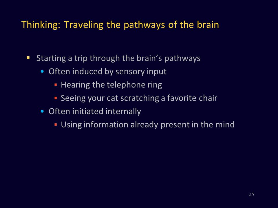 Thinking: Traveling the pathways of the brain  Starting a trip through the brain's pathways Often induced by sensory input  Hearing the telephone ring  Seeing your cat scratching a favorite chair Often initiated internally  Using information already present in the mind 25