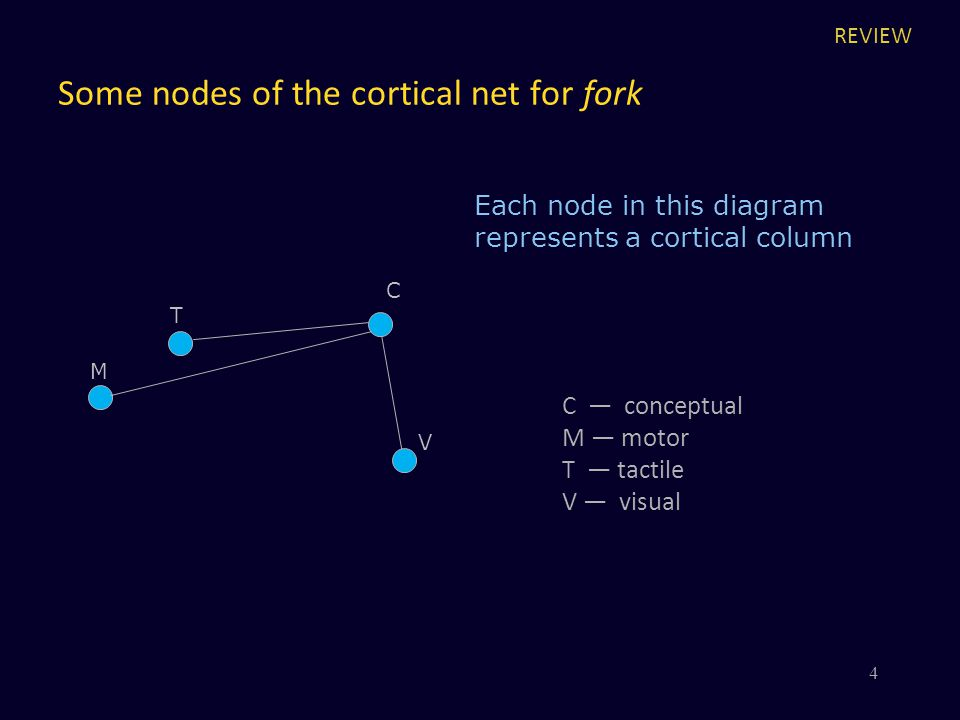 Some nodes of the cortical net for fork V C Each node in this diagram represents a cortical column M T 4 C — conceptual M — motor T — tactile V — visu