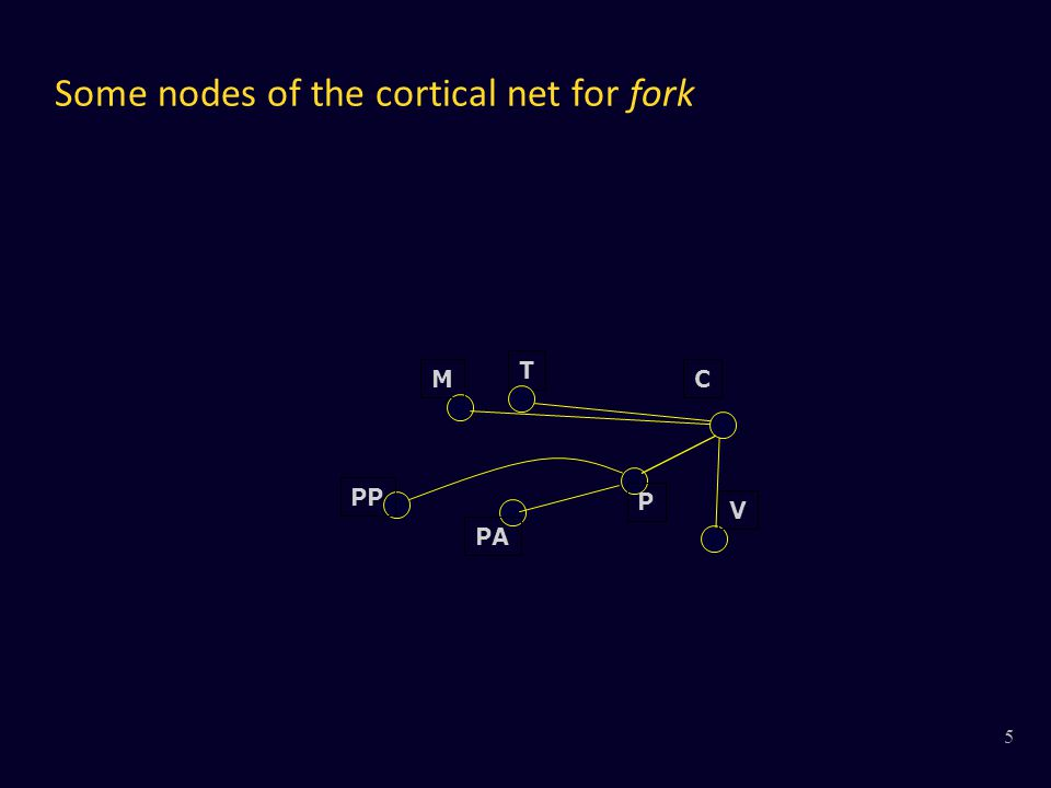 Some nodes of the cortical net for fork V MC T P PA PP 5