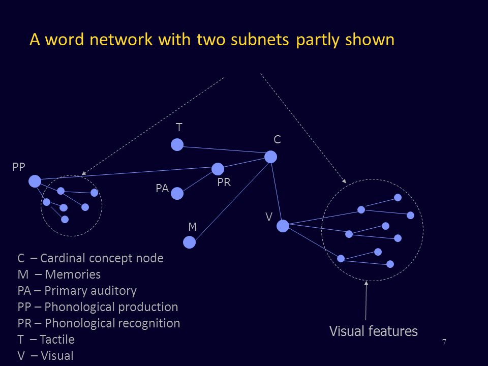 A word network with two subnets partly shown V PR PA M C PP T Visual features C – Cardinal concept node M – Memories PA – Primary auditory PP – Phonol