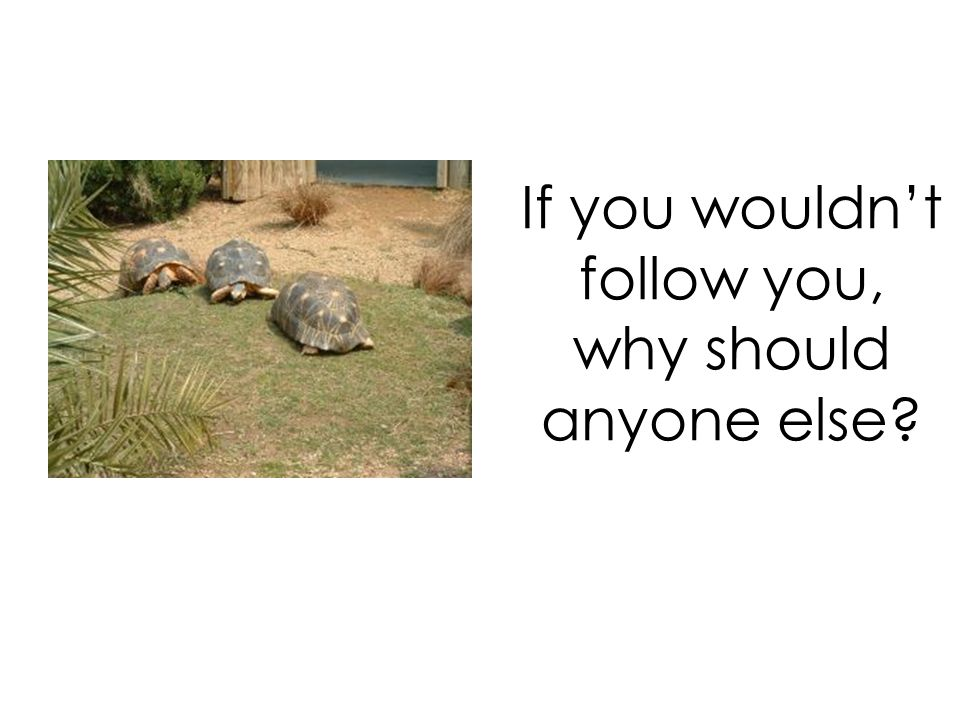 If you wouldn't follow you, why should anyone else?