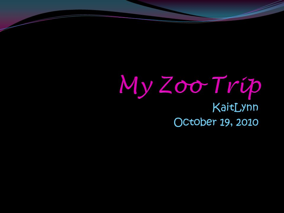 What I would like to know….Questions Answers What do you do as a zookeeper.