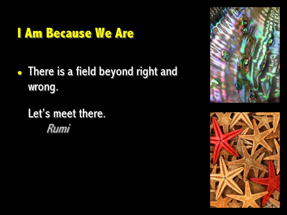 I Am Because We Are There is a field beyond right and wrong. Let's meet there. Rumi There is a field beyond right and wrong. Let's meet there. Rumi