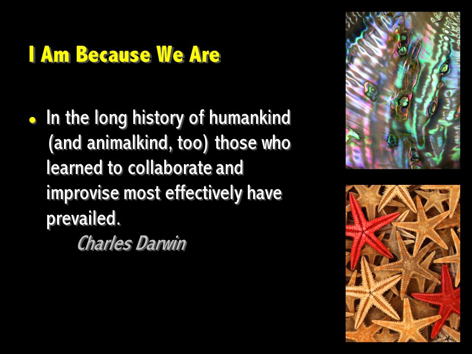 I Am Because We Are In the long history of humankind (and animalkind, too) those who learned to collaborate and improvise most effectively have prevai
