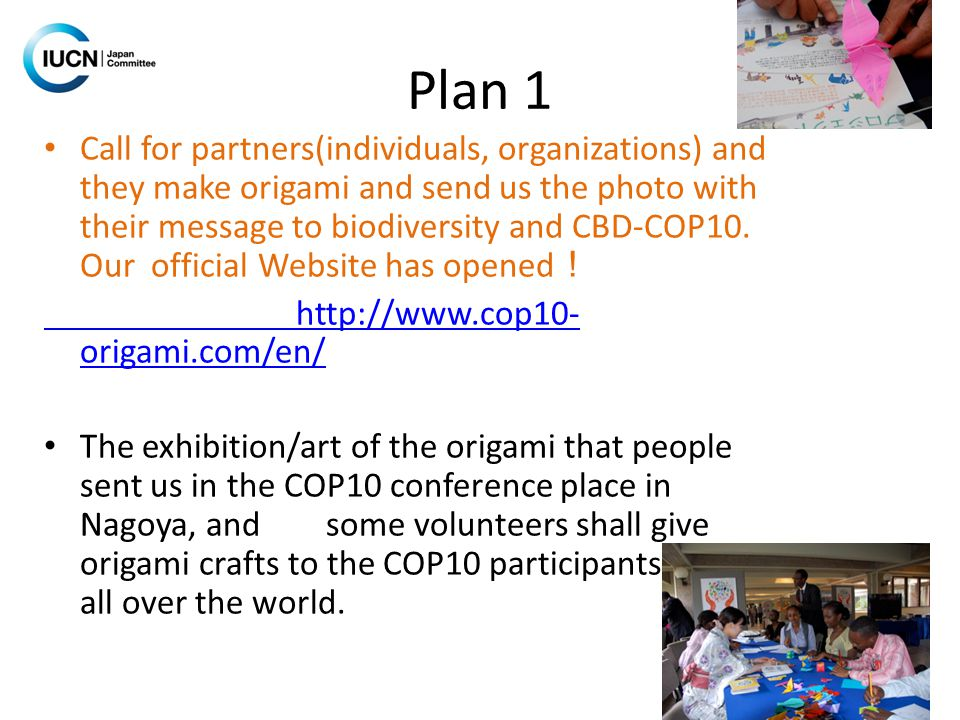 Plan 1 Call for partners(individuals, organizations) and they make origami and send us the photo with their message to biodiversity and CBD-COP10.