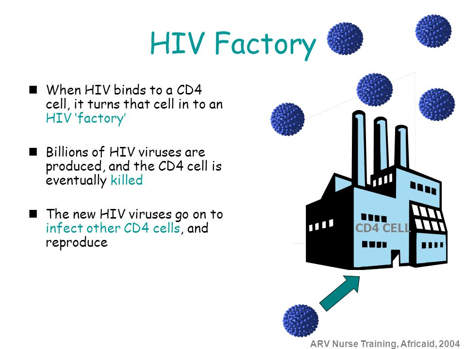 ARV Nurse Training, Africaid, 2004 HIV Factory When HIV binds to a CD4 cell, it turns that cell in to an HIV 'factory' Billions of HIV viruses are pro
