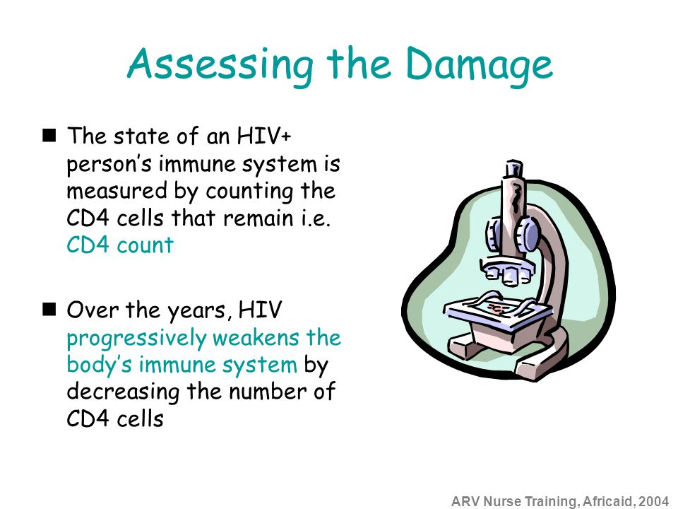 ARV Nurse Training, Africaid, 2004 Assessing the Damage The state of an HIV+ person's immune system is measured by counting the CD4 cells that remain