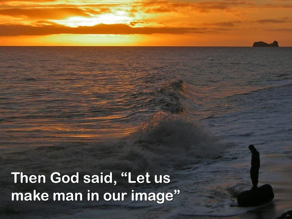 "Then God said, ""Let us make man in our image"""