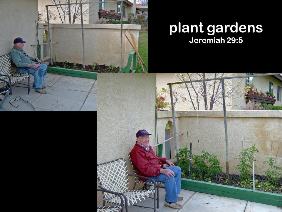 plant gardens Jeremiah 29:5