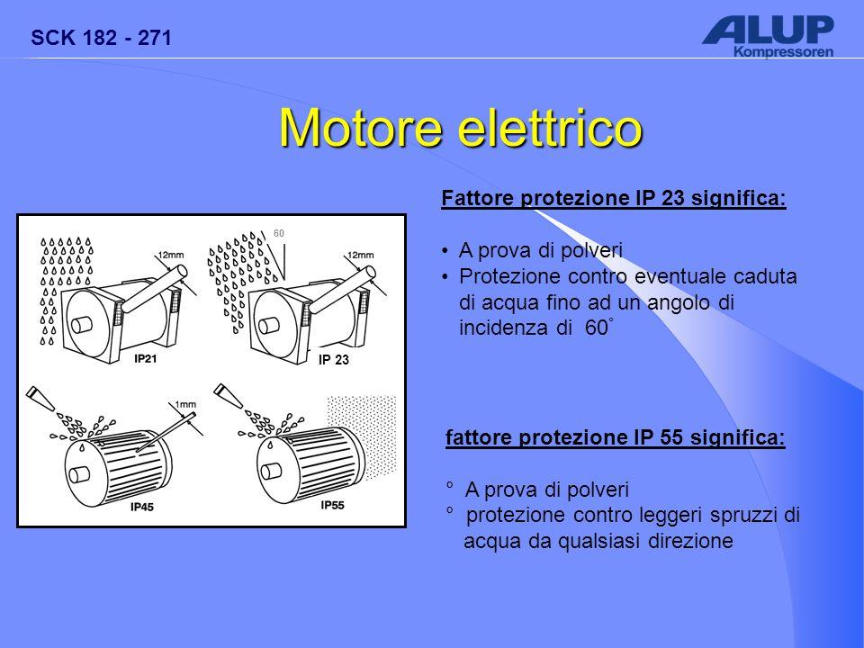 SCK 182 - 271 IP 23 60 Motore elettrico Fattore protezione IP 23 significa: A prova di polveri Protezione contro eventuale caduta di acqua fino ad un