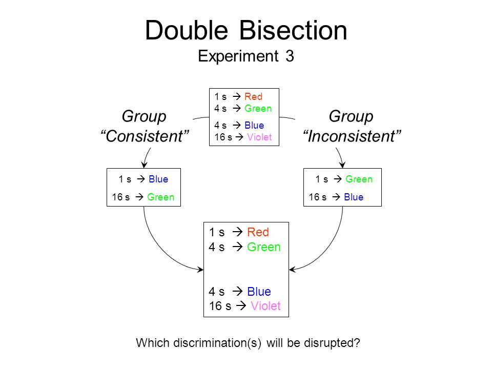 Double Bisection Experiment 3 1 s  Red 4 s  Green 4 s  Blue 16 s  Violet 1 s  Green 16 s  Blue 1 s  Blue 16 s  Green 1 s  Red 4 s  Green 4 s  Blue 16 s  Violet Group Consistent Group Inconsistent Which discrimination(s) will be disrupted?