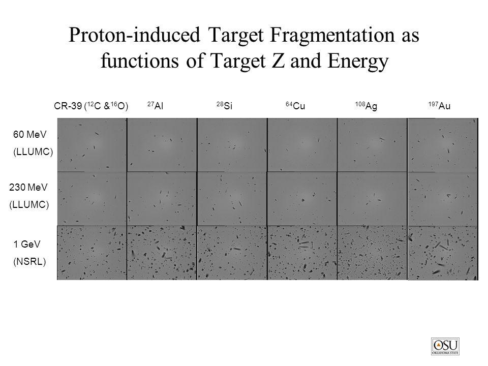 Proton-induced Target Fragmentation as functions of Target Z and Energy CR-39 ( 12 C & 16 O) 27 Al 28 Si 64 Cu 108 Ag 197 Au 60 MeV (LLUMC) 230 MeV (LLUMC) 1 GeV (NSRL)