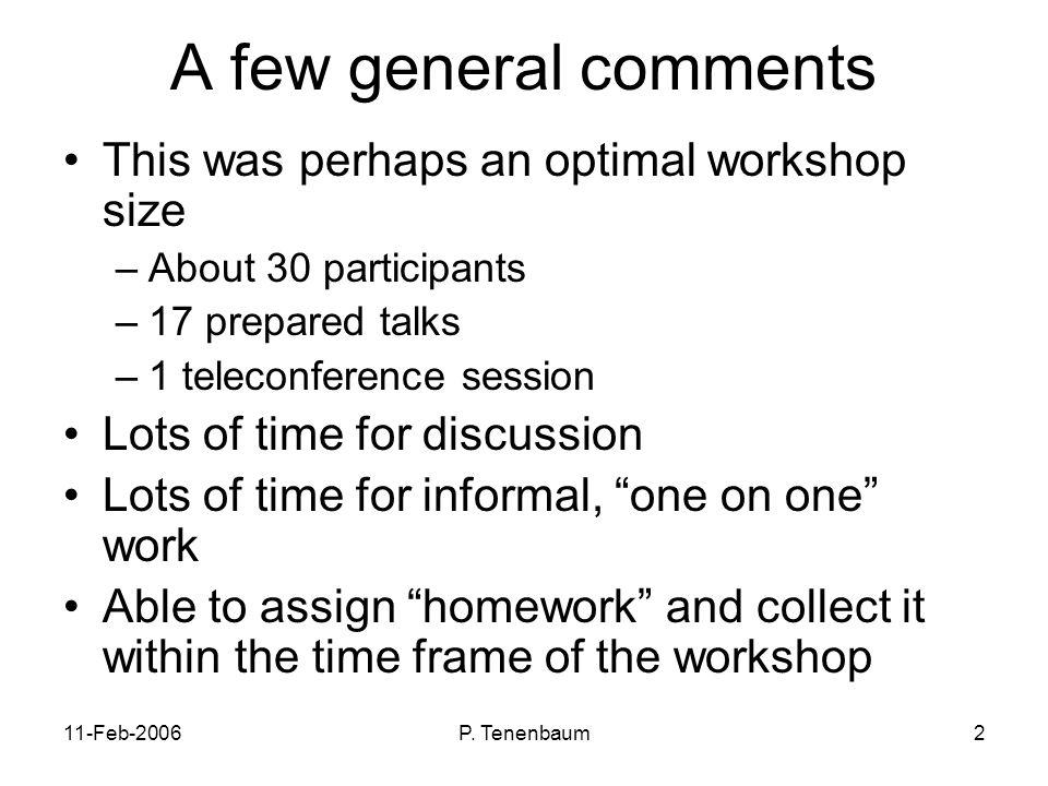 P. Tenenbaum2 A few general comments This was perhaps an optimal workshop size –About 30 participants –17 prepared talks –1 teleconference session Lot