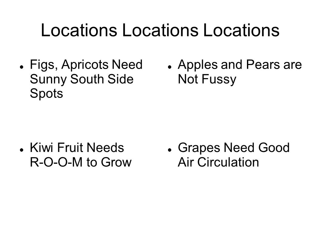 Locations Locations Locations Figs, Apricots Need Sunny South Side Spots Apples and Pears are Not Fussy Grapes Need Good Air Circulation Kiwi Fruit Needs R-O-O-M to Grow