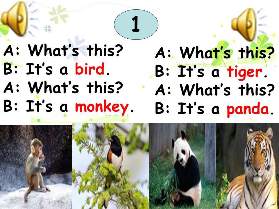 A: What's this? B: It's a bird. A: What's this? B: It's a monkey. A: What's this? B: It's a tiger. A: What's this? B: It's a panda. 1