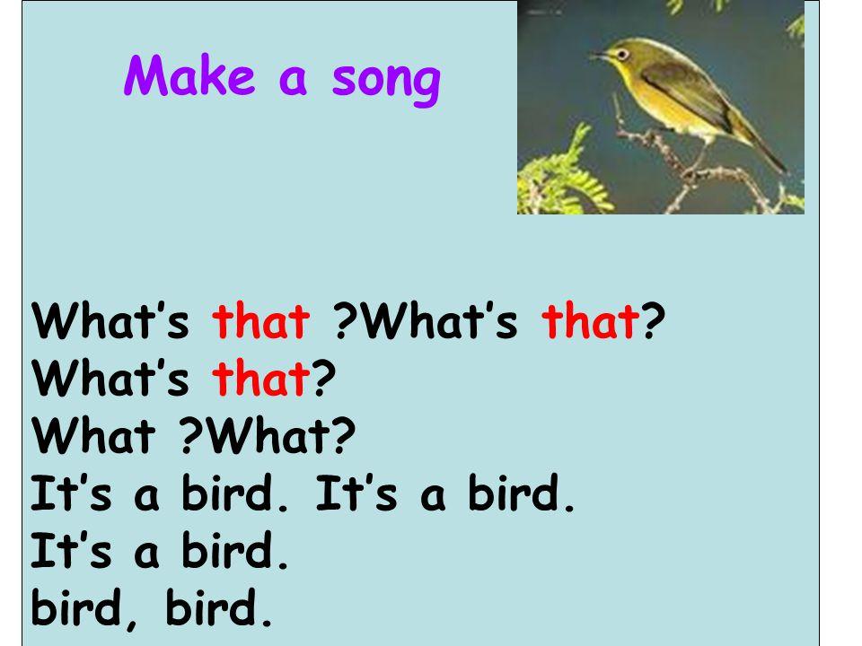 What's that ?What's that? What's that? What ?What? It's a bird. bird, bird. Make a song