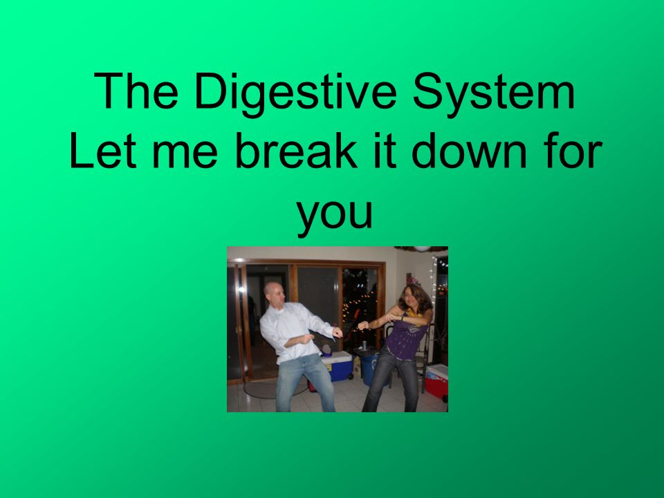 The Digestive System Let me break it down for you