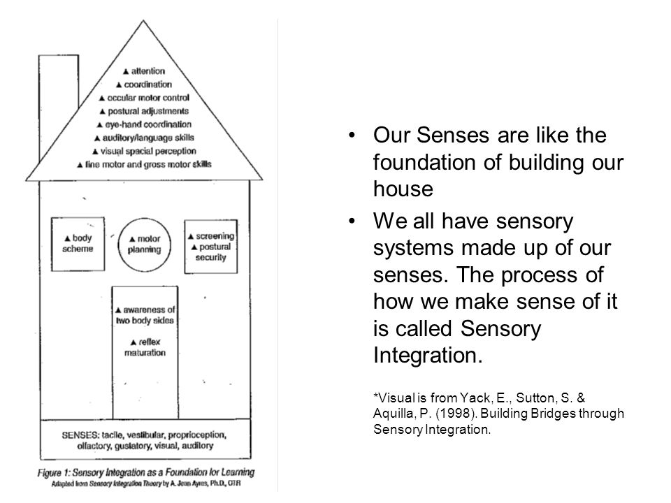 Our Senses are like the foundation of building our house We all have sensory systems made up of our senses. The process of how we make sense of it is