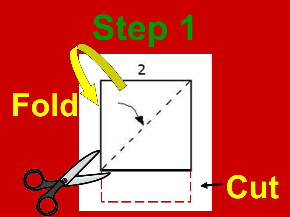 Step 1 Fold Cut