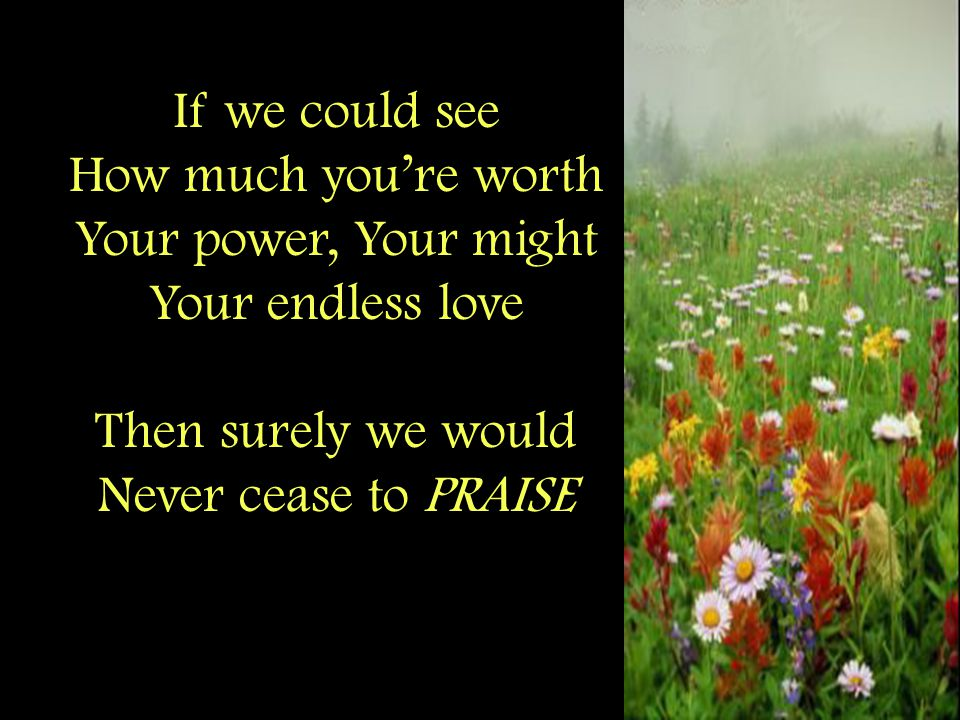 If we could see How much you're worth Your power, Your might Your endless love Then surely we would Never cease to PRAISE