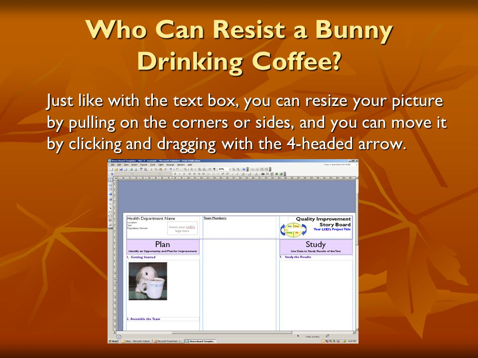 Who Can Resist a Bunny Drinking Coffee.