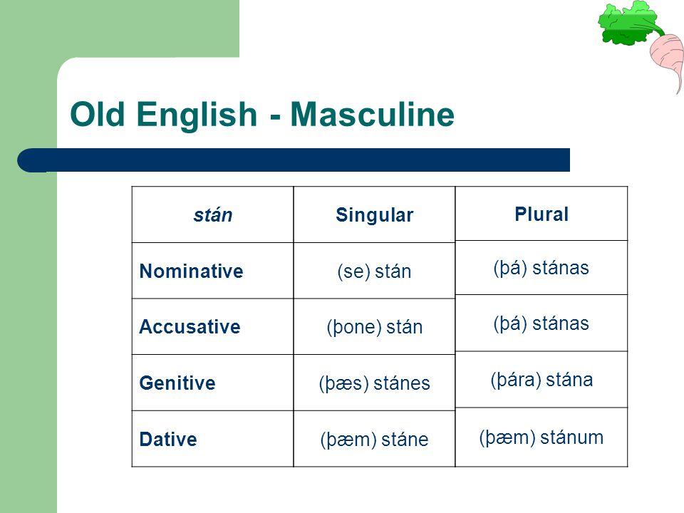 Old English - Masculine stán Nominative Accusative Genitive Dative Singular (se) stán (þone) stán (þæs) stánes (þæm) stáne Plural (þá) stánas (þára) stána (þæm) stánum