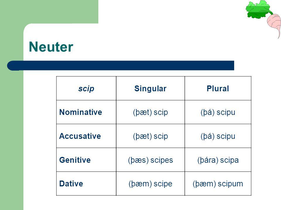 scip Nominative Accusative Genitive Dative Singular (þæt) scip (þæs) scipes (þæm) scipe Plural (þá) scipu (þára) scipa (þæm) scipum Neuter