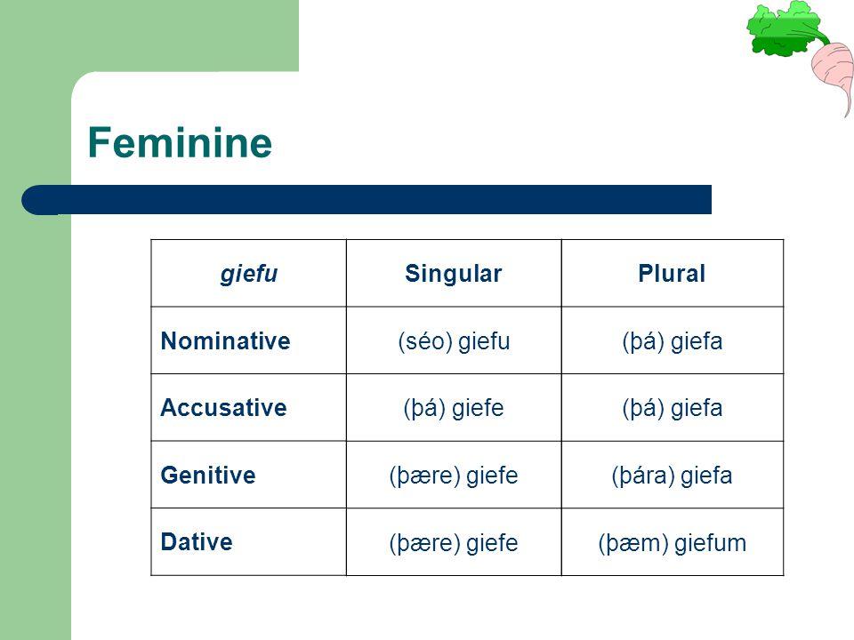 giefu Nominative Accusative Genitive Dative Singular (séo) giefu (þá) giefe (þære) giefe Plural (þá) giefa (þára) giefa (þæm) giefum Feminine