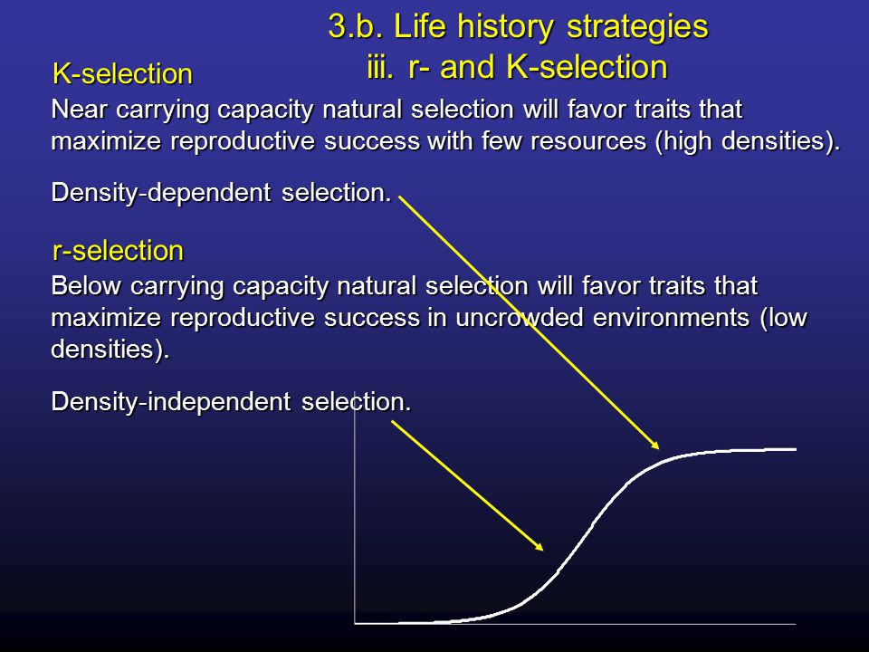 Near carrying capacity natural selection will favor traits that maximize reproductive success with few resources (high densities).
