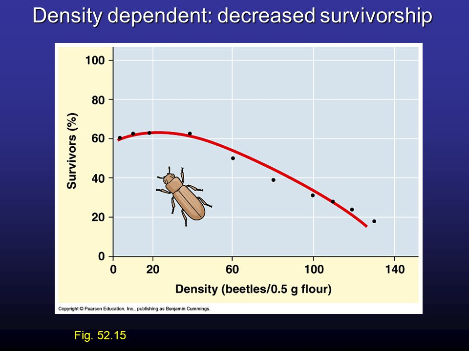 Density dependent: decreased survivorship Fig. 52.15