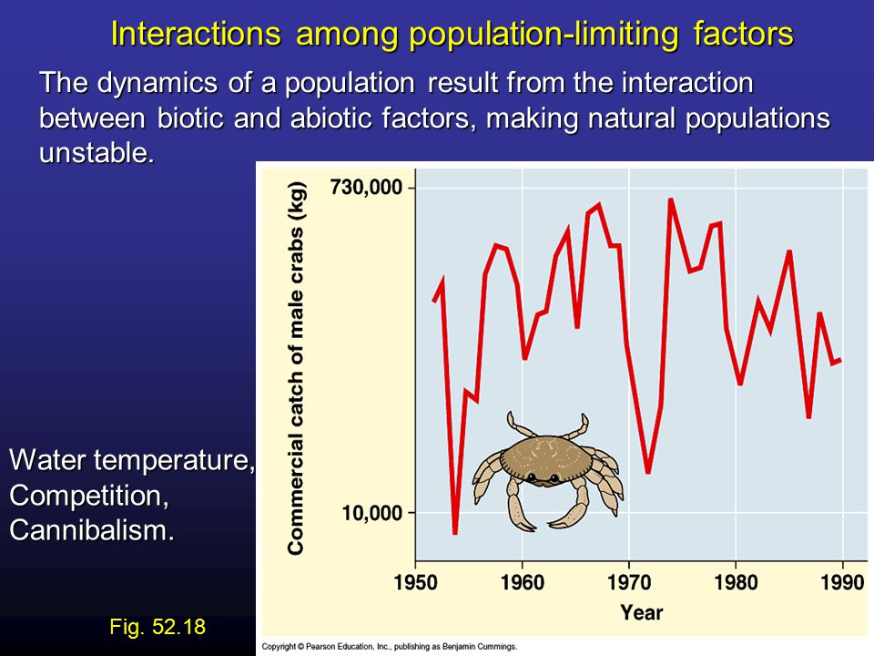 Interactions among population-limiting factors The dynamics of a population result from the interaction between biotic and abiotic factors, making natural populations unstable.