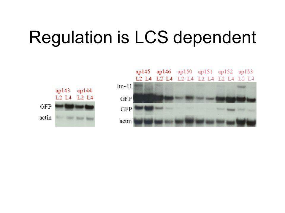ap122 L2 L4 ap125 ap127 ap143 ap144 GFP actin 28S rRNA Regulation is LCS dependentap145 L2 L4 ap146 ap150 ap151 ap152 ap153 lin-41 GFP actin 28S rRNA
