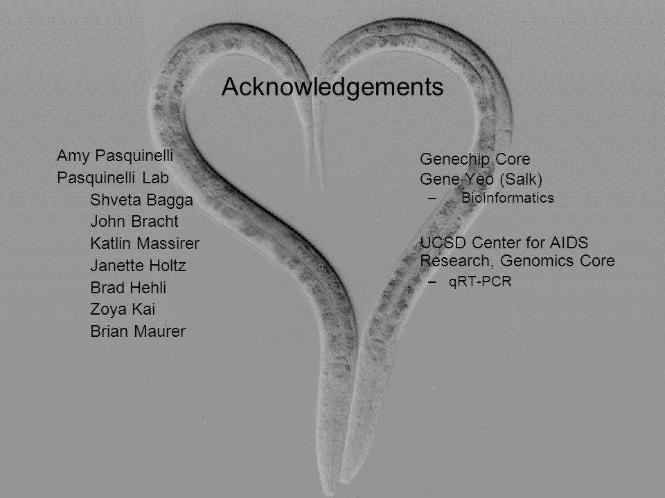 UCSD Center for AIDS Research, Genomics Core (qRT- PCR) Acknowledgements Amy Pasquinelli Pasquinelli Lab Shveta Bagga John Bracht Katlin Massirer Jane