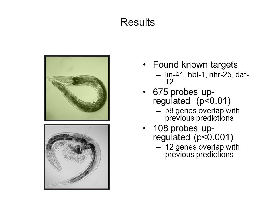 Results Found known targets –lin-41, hbl-1, nhr-25, daf- 12 675 probes up- regulated (p<0.01) –58 genes overlap with previous predictions 108 probes u