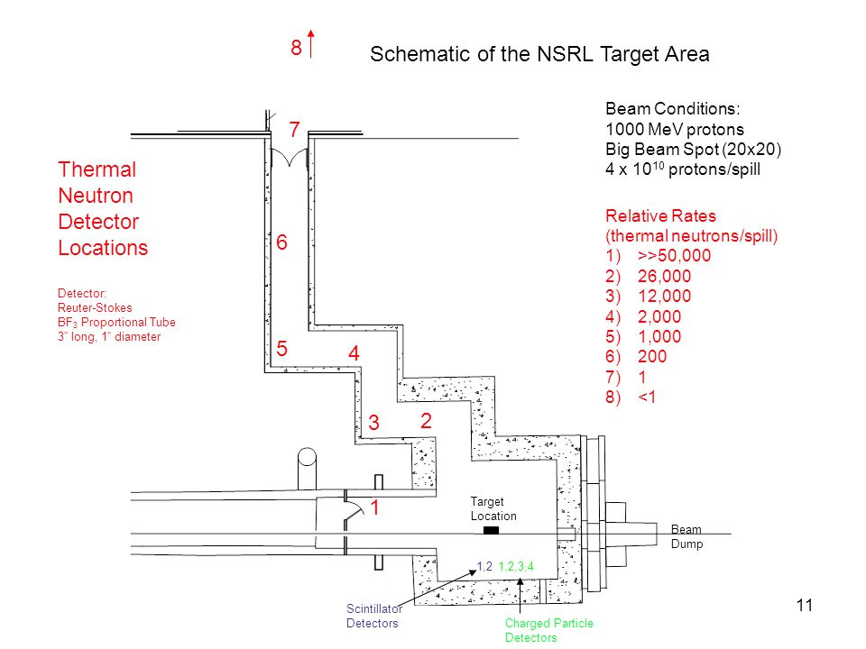 "11 Schematic of the NSRL Target Area 1 2 3 4 5 6 7 Thermal Neutron Detector Locations Detector: Reuter-Stokes BF 3 Proportional Tube 3"" long, 1"" diame"